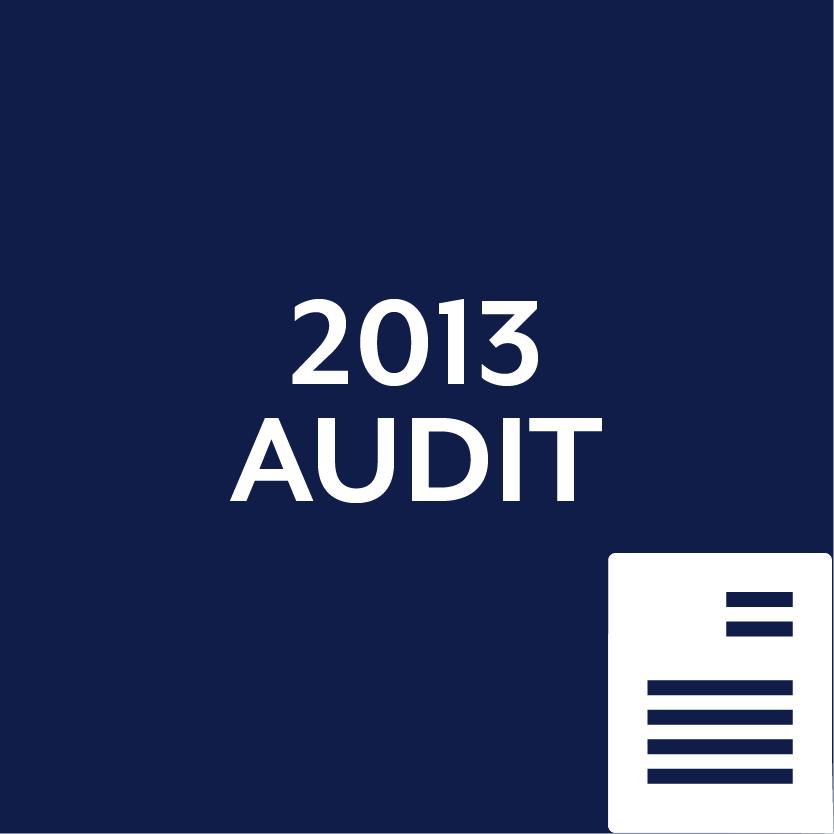 2013 Audit