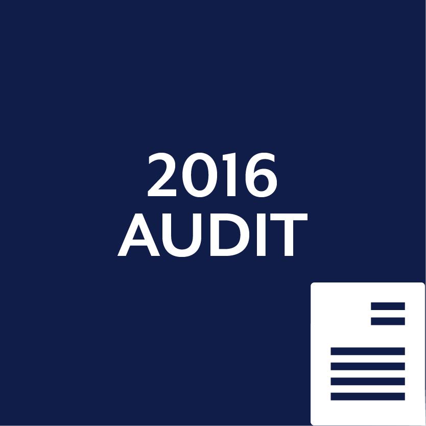 2016 Audit